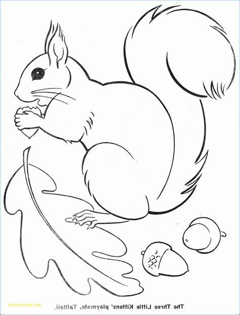 Malvorlagen Herbst Eichhörnchen