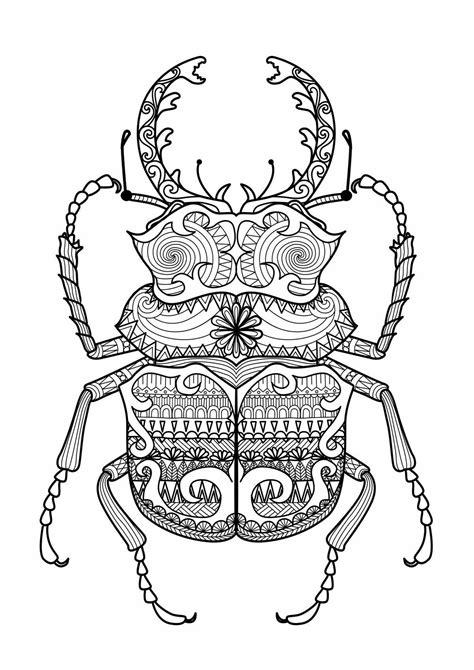 Malvorlagen Insekten Cheat