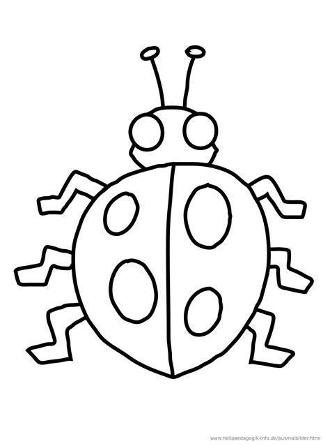 Malvorlagen Käfer Insekten