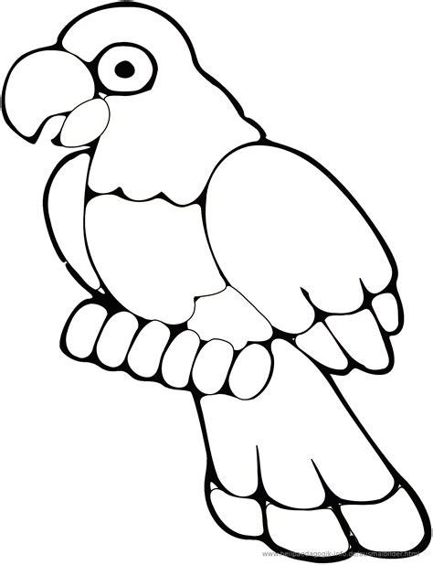 Malvorlagen Kostenlos Ausdrucken Papagei
