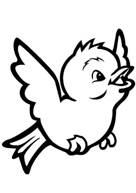 Malvorlagen Vögel Kostenlos Ausdrucken