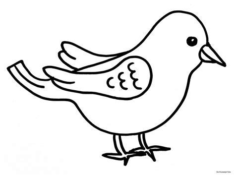 Malvorlagen Vögel Kostenlos Cd