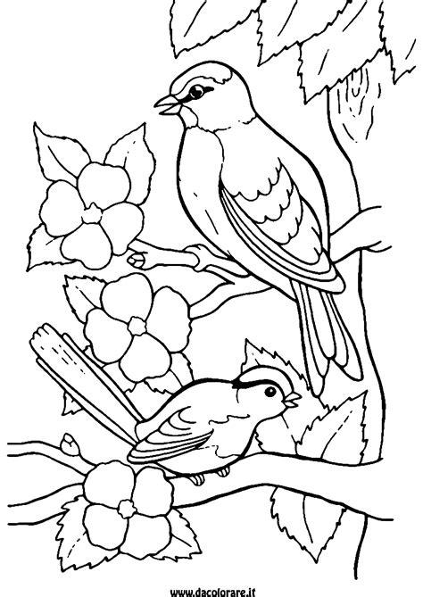 Malvorlagen Vögel Zum Ausdrucken Mädchen