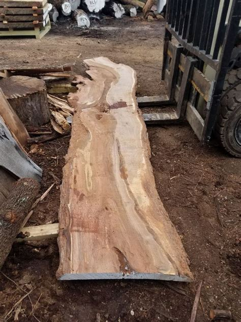 Mesquite slabs for sale Image