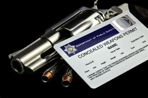 Michigan Handgun Laws 2017