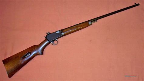 Models Winchester Rifles 22