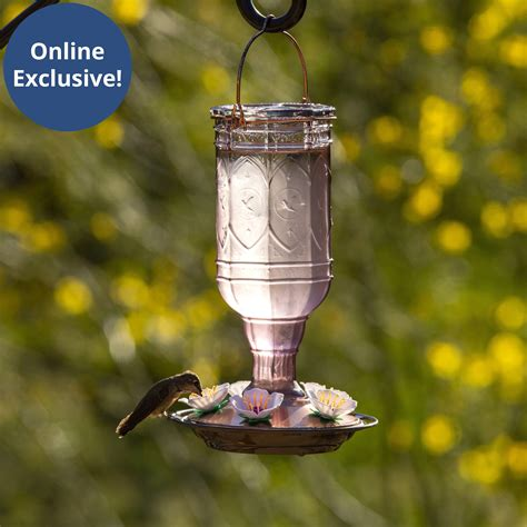 More birds hummingbird feeders Image