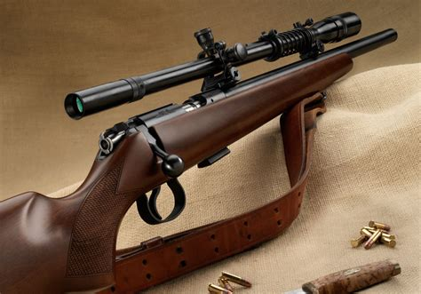 Most Accurate Varmint Rifle
