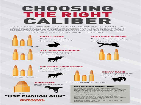 Most Popular Assault Rifle Caliber