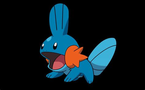 Mudkip Wallpaper HD Wallpapers Download Free Images Wallpaper [1000image.com]