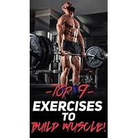 Muscle pyramid the ultimate muscle growth workouts inexpensive