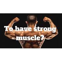 Buy muscle, strength & health best selling offers
