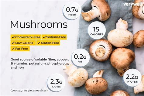 Mushrooms Nutrition Watermelon Wallpaper Rainbow Find Free HD for Desktop [freshlhys.tk]