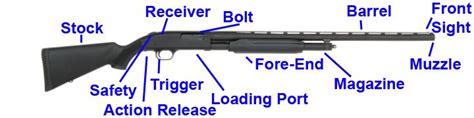 Name Parts Of A Mossberg Shotguns