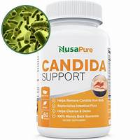 Natural yeast infection cure & candida cleanse up to 12% conversion guides