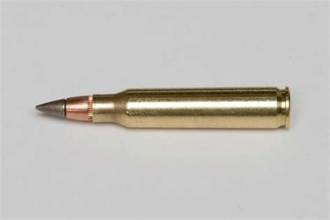 New Marine Corps 5 56 And 9mm Ammo