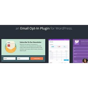 Newsletter the newsletter plugin for wordpress promotional codes