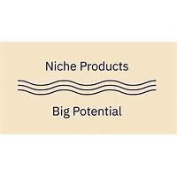 Niche product publishing promo