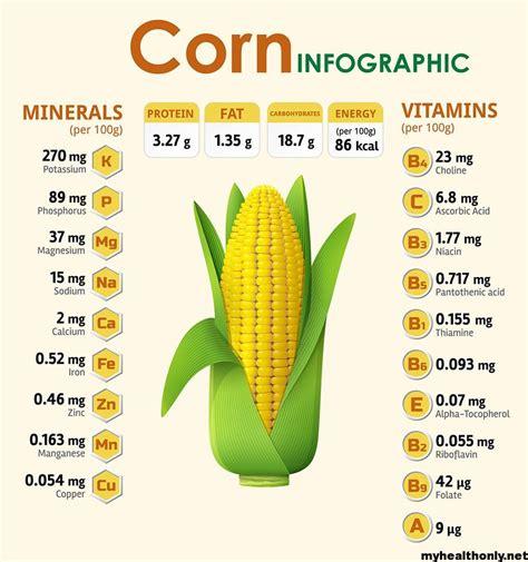 Nutritional Value Of Corn Watermelon Wallpaper Rainbow Find Free HD for Desktop [freshlhys.tk]