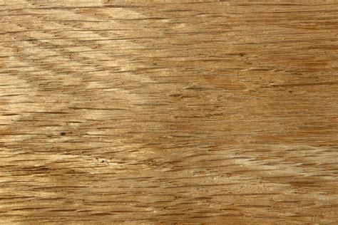 Oak grain Image