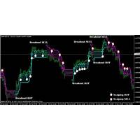 Omega trend indicator the best forex mt4 indicator is it real?
