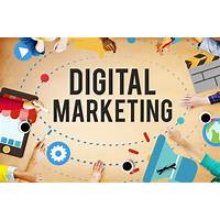 Online presence, digital marketing training is bullshit?