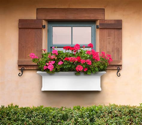 Outside window flower boxes Image
