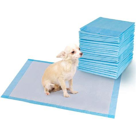 padding for dog training.aspx Image