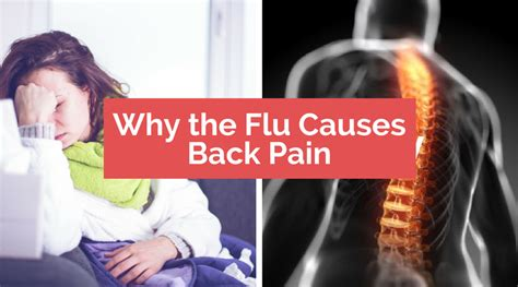 Pain In Back Flu