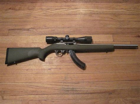 Paint Ruger 10 22 Receiver