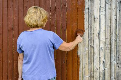 Paint or stain wood fence Image