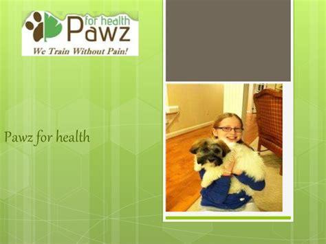 pawz for health dog training.aspx Image