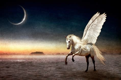 Pegasus Wallpaper HD Wallpapers Download Free Images Wallpaper [1000image.com]
