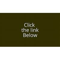 Petsumer report pet food ratings and reviews secrets