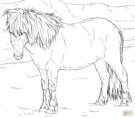 Pferde Malvorlage Kostenlos