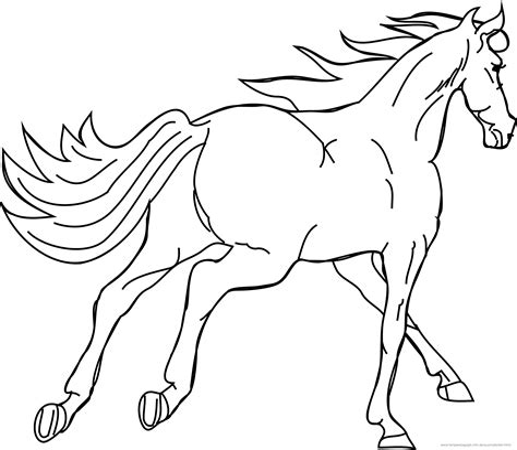 Pferde Malvorlagen Kostenlos Ausdrucken
