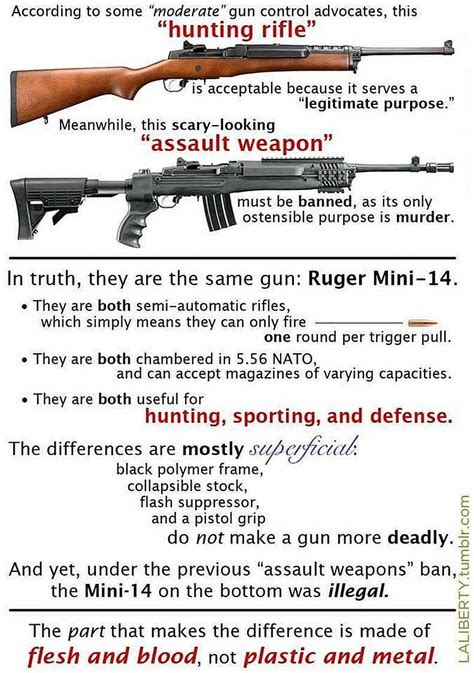 Picture Of Assault Weapon Versus Versus Hunting Rifle