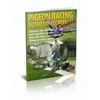 Free tutorial pigeon racing nutrition secrets exposed