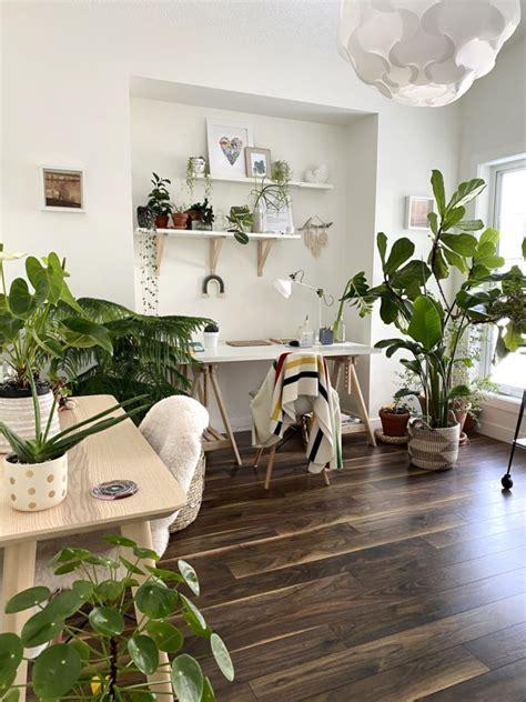 Plant Home Decor Home Decorators Catalog Best Ideas of Home Decor and Design [homedecoratorscatalog.us]