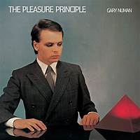 Pleasure principle work or scam?