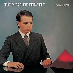Pleasure principle promotional codes