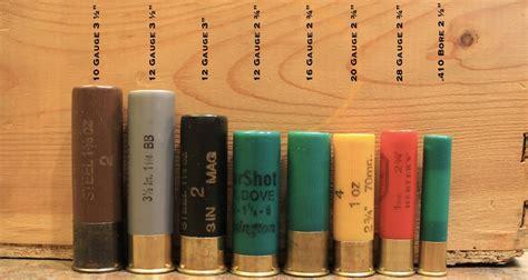 Popular Shotgun Gauges