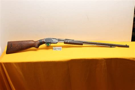 Premier 22 Pump Rifle