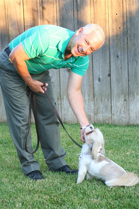 professional dog obedience training