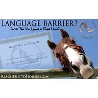 Professional horse training course solve problems fast! promo code