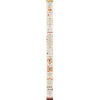 Public speaking cheat methods