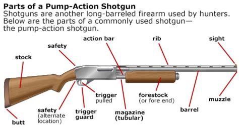 Pump Action Shotgun Internals