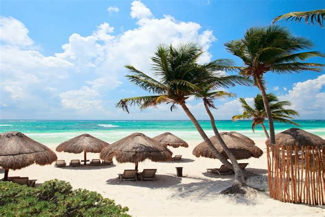 Punta Cana Vuelo Hotel Todo Incluido Hotel Near Me Best Hotel Near Me [hotel-italia.us]