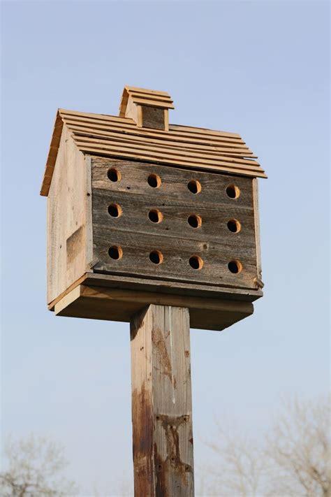 Purple martin house home made Image