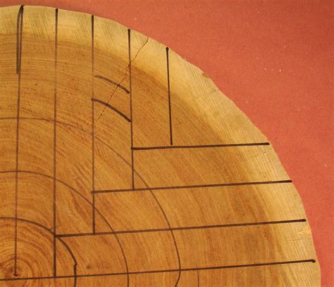 Quarter sawn lumber Image